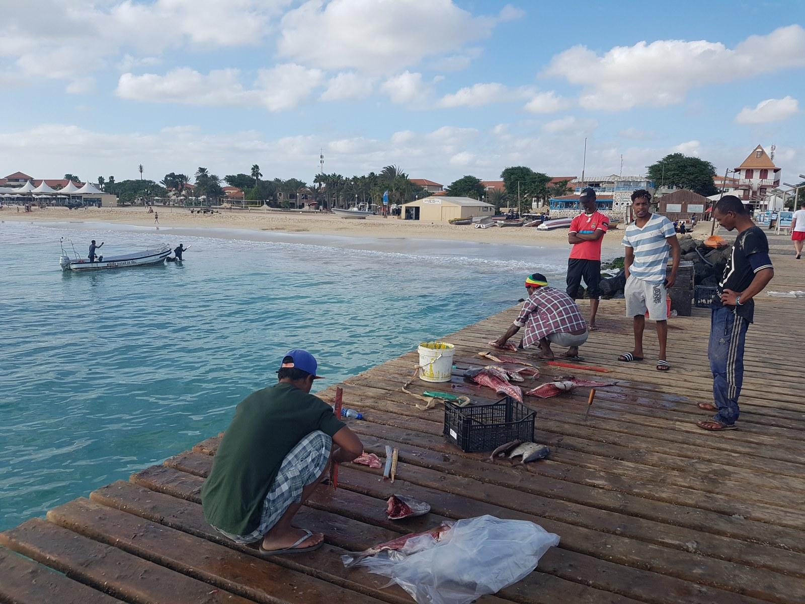 Auf der Kapverdischen Insel Sal kann man täglich Fischer beobachten, die ihren Fang an Land bringen