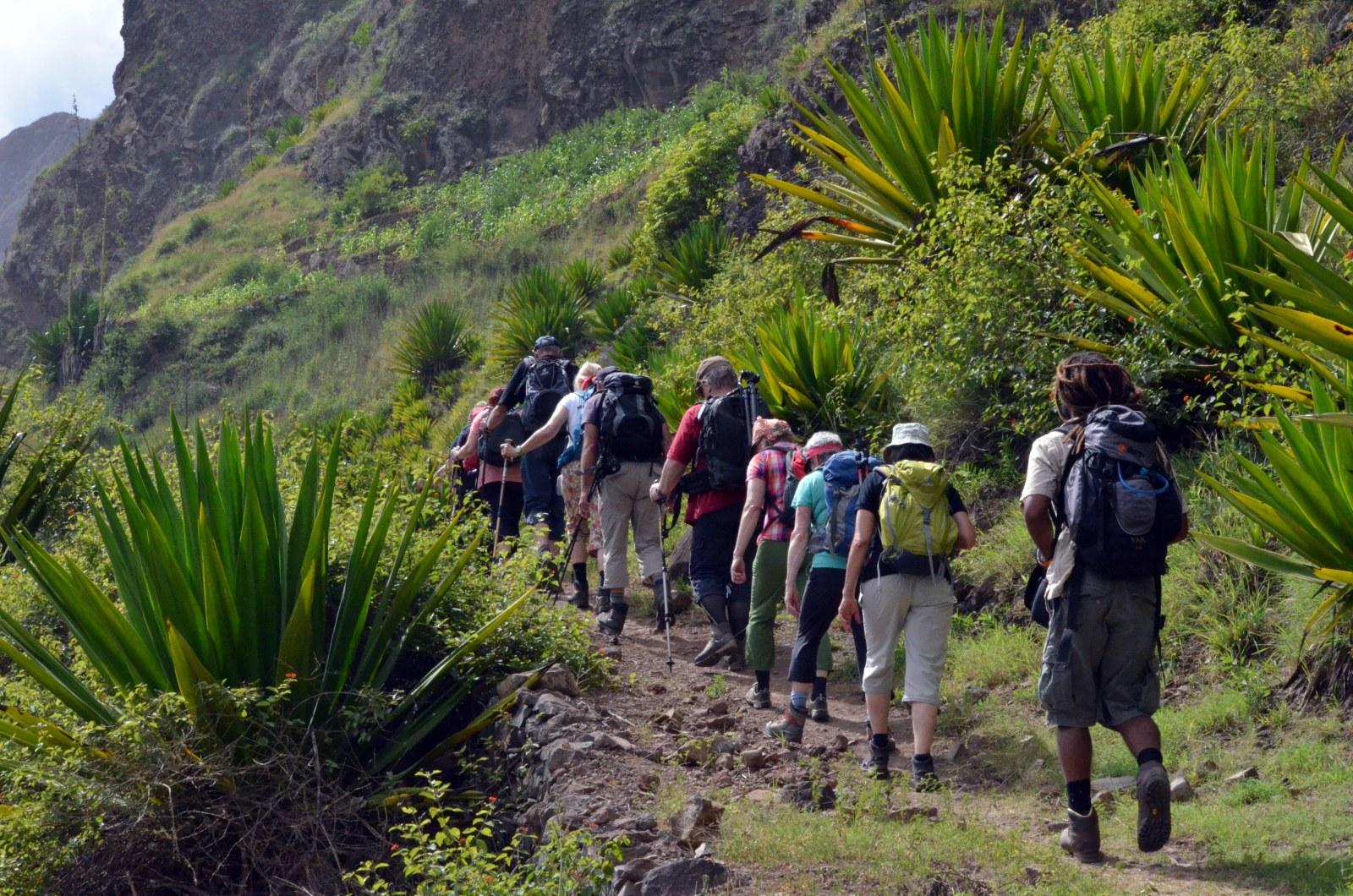 Santo Antao: Die ca. 6-stündige leicht bis mittelschwere Wanderung zum Pico de Antonio nach Figueiral führt Sie durch tropische Landschaften mit fantastischen Ausblicken. Tritt- und Schwindelfreiheit sowie gutes Schuhwerk sind Voraussetzungen für diese Tour im grünen Val do Paul. Die Wanderung endet im tropischen Tal von Figueiral.